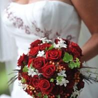 Spontane Fotografie rode rozen