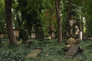 Eliasfriedhof in Dresden (1)