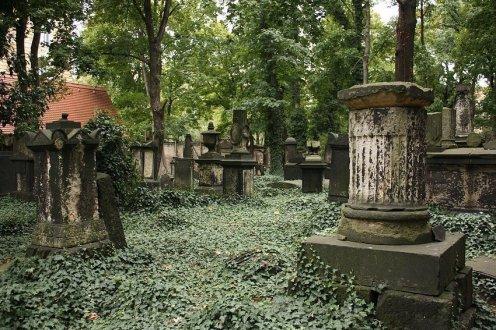 Eliasfriedhof in Dresden (7)