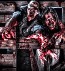 2013_zombieHomepage