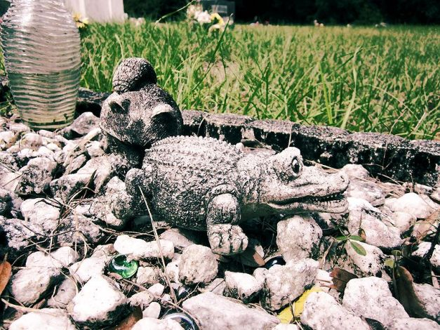 A concrete alligator amongst the many offerings on a child's grave