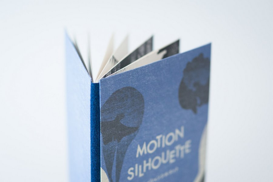 motion sihouette storybook (5)