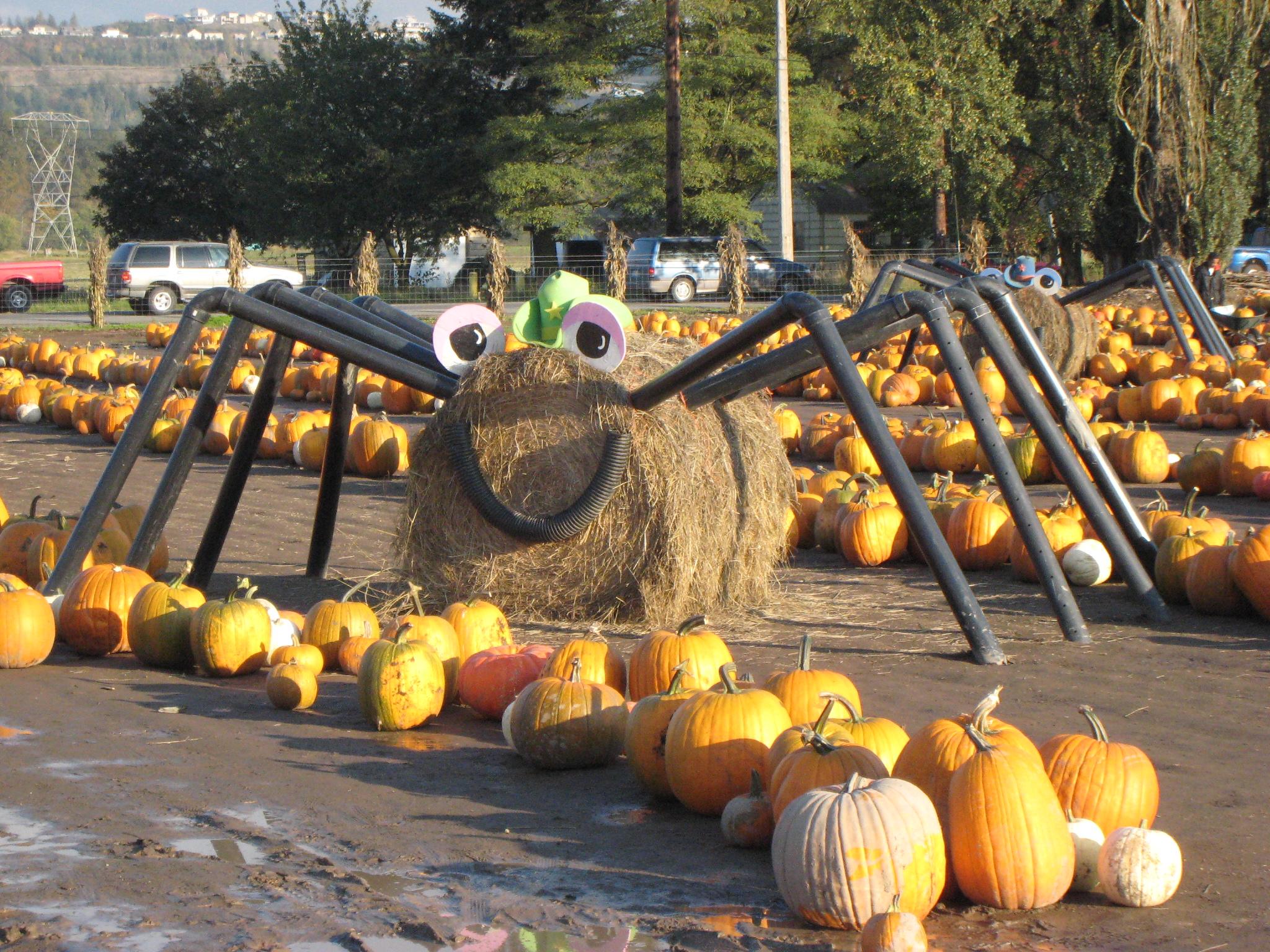 Spooner Farms Harvest Festival And Pumpkin Patch