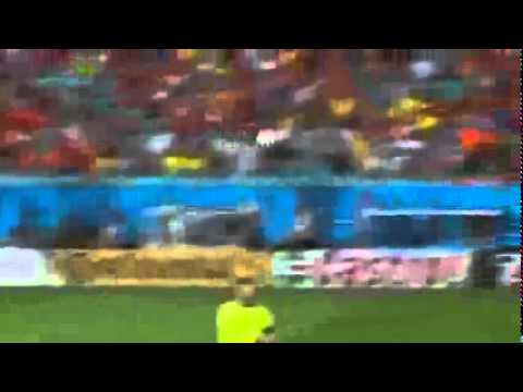 Flying Goal Robin Van Persie World cup Brazil FIFA 2014