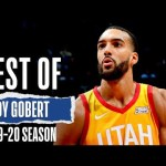 Rudy Gobert 2019-20 Full Season Highlights