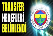 Fenerbahçe 2019 transfer listesi