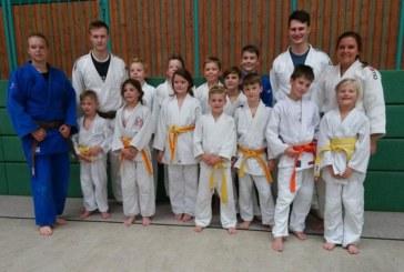Sieben Nachwuchsjudoka qualifizieren sich für die Westfalen-Meisterschaft – JCH stellt zwei Bezirksmeister