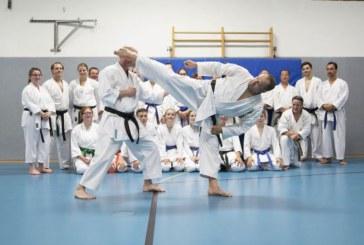 Karate-Trainer Wolfgang Stramka erreicht 6. DAN