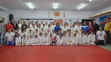 """Photo of Porți deschise pentru Panda Team Arad de Ziua Mondială a Judo-ului: """"Plantează un copac"""" e tema anului ce va fi cultivată și la Bazinul """"Delfinul"""""""