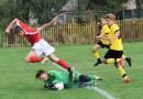 Viitorul, Atletico și CS Ineu reprezintă Aradul în Liga Elitelor U15