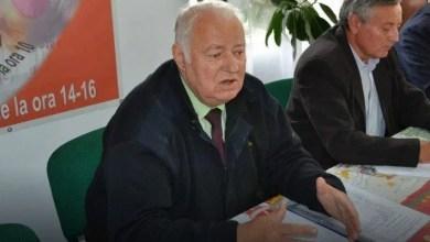 Photo of A cerșit pentru UTA și a iubit câinii: Gheorghe Schill a plecat dintre noi la vârsta de 77 de ani