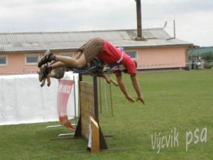 Спорт с собакой серьезно