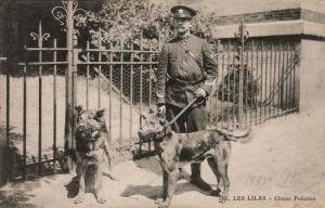 First dogs of Paris police dog brigade-2