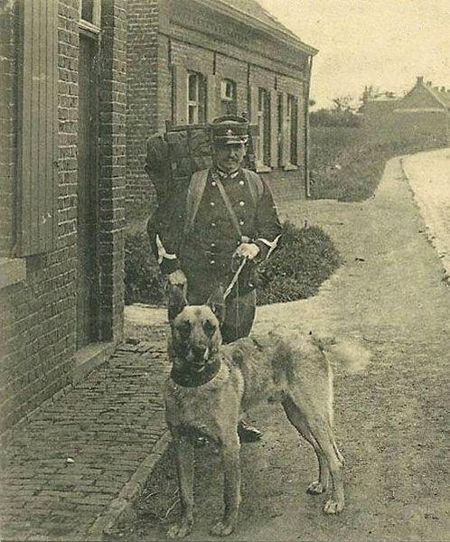 """Офицер пограничной таможни со своим """"бельгийцем"""""""