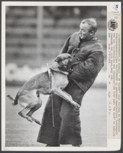 Национальный чемпионат PH-2 KNPV, Голландия, на стадионе De Vliert, 1984 г.