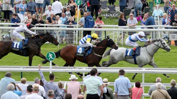Sky Bet Market Movers, Price Boosts and Trader's Tip for Royal ...