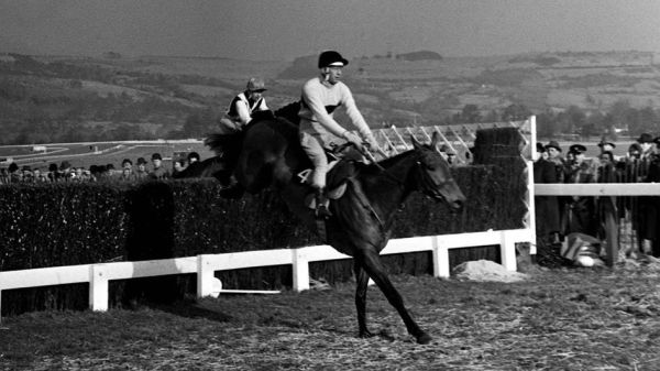 Arkle winning the 1964 Gold Cup, his first of three
