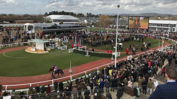 A view of the Cheltenham parade ring, Gold Cup day 2018