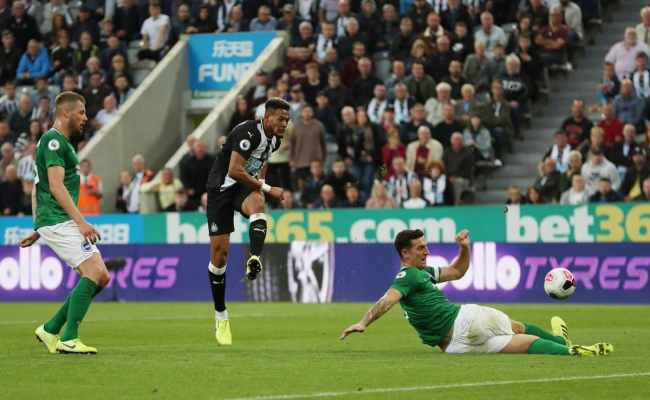 Newcastle Vs Brighton Preview Tips And Odds