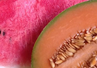 cocomero o melone