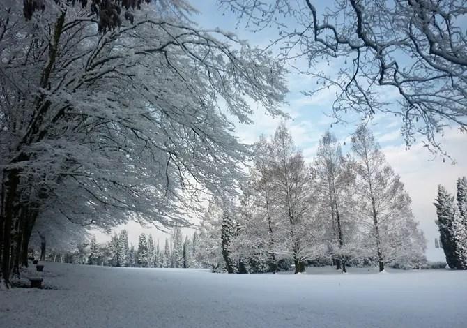 Ecco la neve sui parchi più belli d'Italia