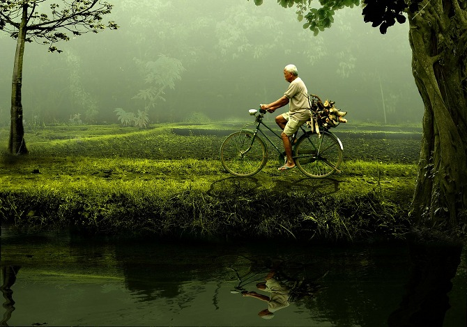 Natura Longevità