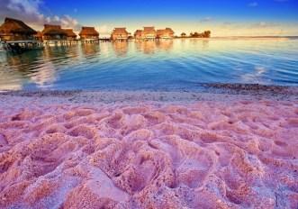 Playas-Playa-Rosada-Bahamas_0