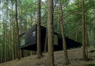 casa-albero-natura-bosco