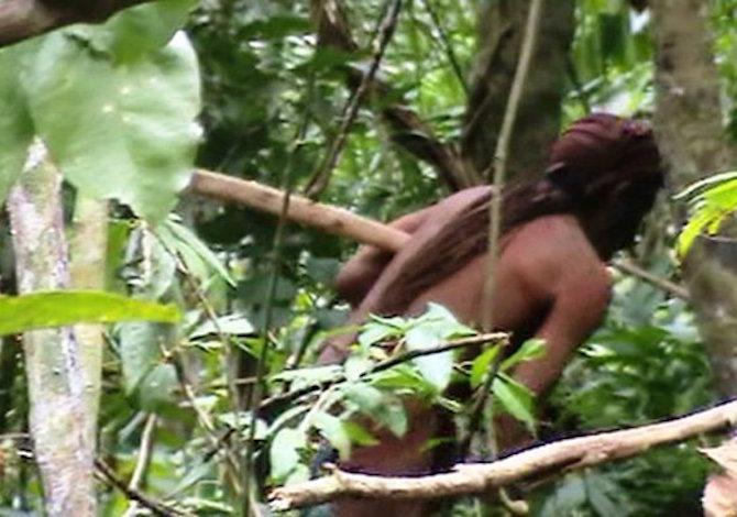 amazzonia-sopravvissuto-foresta-video-foto-acervo-funai