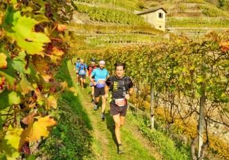 Valtellina Wine Trail 2018