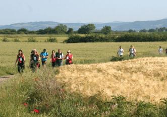 via-francigena-maratona