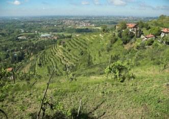 monza-montevecchia-trail