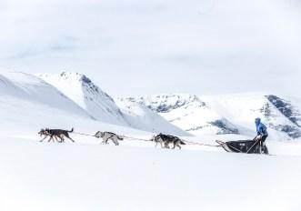 Fjällräven Polar 2020