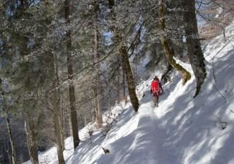 Impianti chiusi e niente sci: cosa fare in montagna?