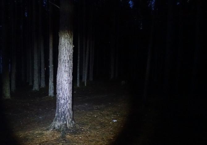 Monte Circeo: 2 dispersi incontrano 2 dispersi. Forestale e Vigili del Fuoco li salvano assieme