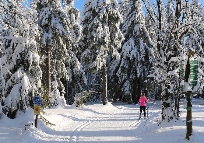 Lo sci di fondo è uno sport per tutti