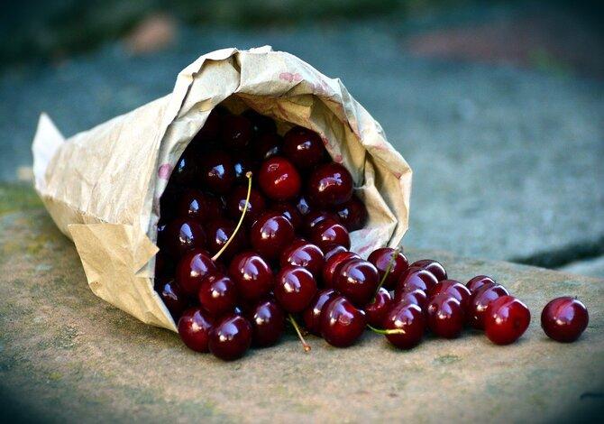 migliori ciliegie d'italia