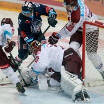 27.1.2017 Praha/CR/ sport/ledni hokej/ HC Sparta Praha/ Bili tygri Liberec foto CPA