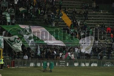 Ternana-Avellino 14-15 (24)