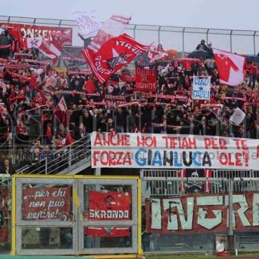 Livorno - Perugia 2014-15 510