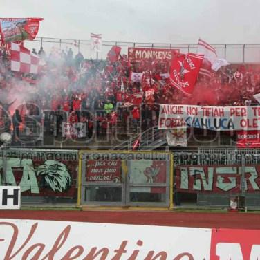 Livorno - Perugia 2014-15 687