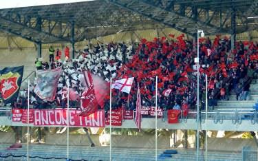 Sambenedettese-Ancona-Lega-Pro-2016-17-03