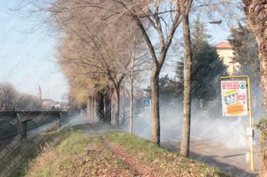 Vicenza-Verona-Serie-B-2016-17-03