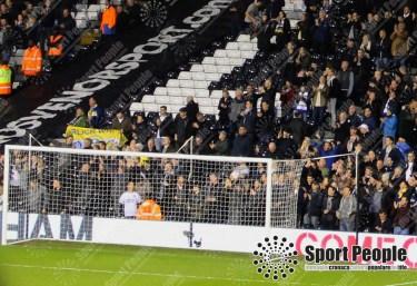 Fulham-Leeds (2)