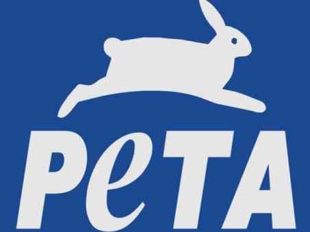 peta-bunny