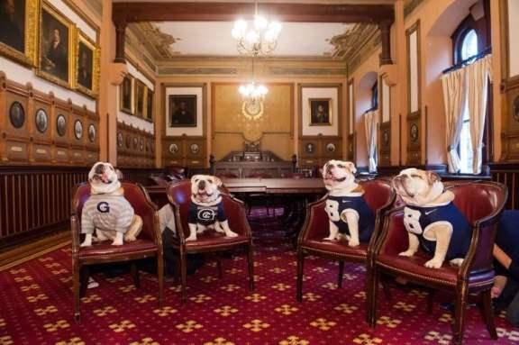 georgia-bulldogs-butler-bulldogs