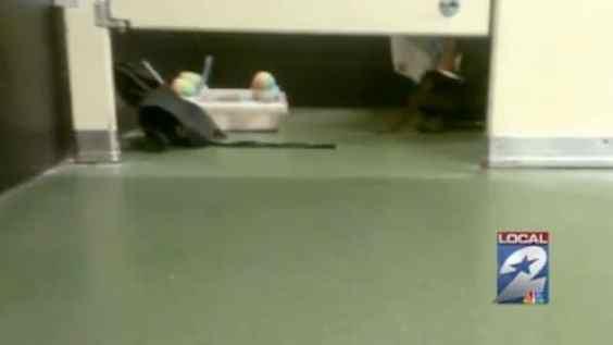 pooping-houston-astros-vendor