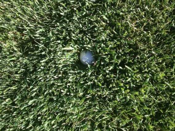 merrion-golf-club-justin-rose-rough