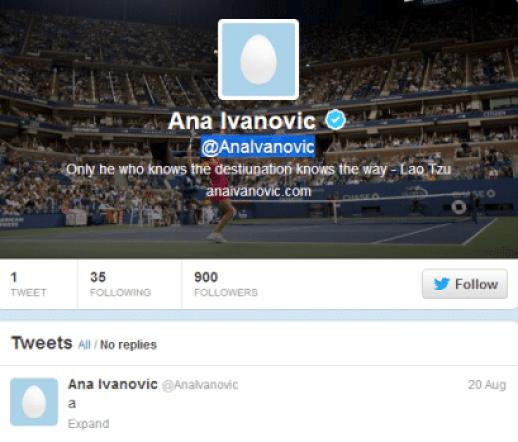 Ana-Ivanovic-twitter-debut