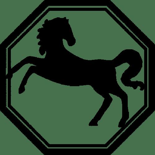 zodiac-horse-denver-broncos